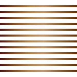 LINE 2mm(ライン2ミリ・ブライトゴールド/レンジ対応)