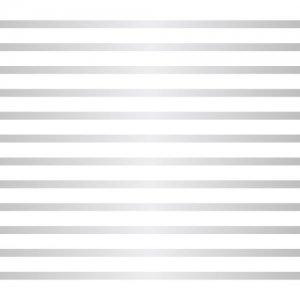 LINE 2mm(ライン2ミリ・プラチナ/レンジ対応)