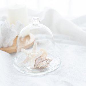 ミニガラスドーム(受け皿付き)/コンポート ケーキスタンド