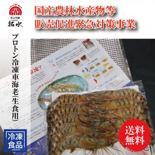 種子島産プロトン冷凍車海老(生食用)