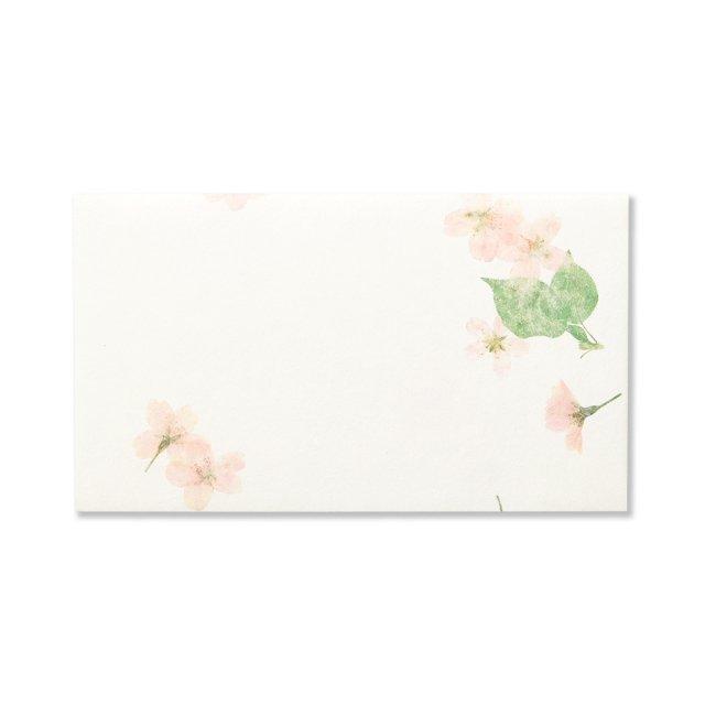 封筒 ピュアナチュラル桜