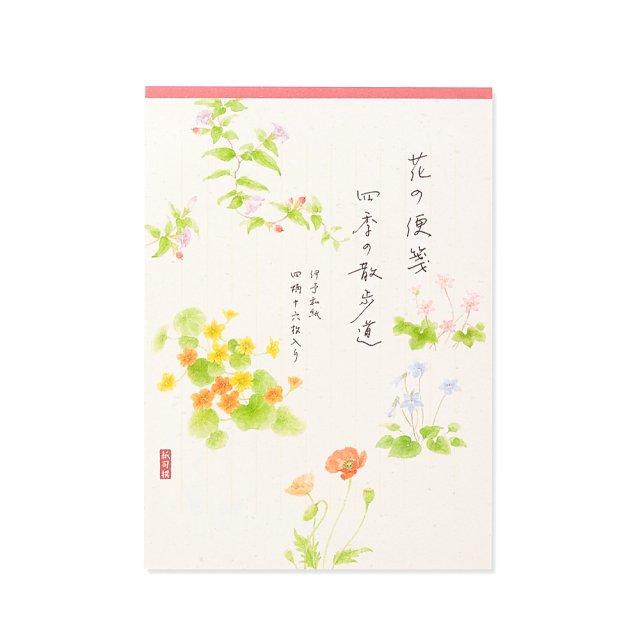 紙司撰 便箋 花の便箋 四季の散歩道・紅 タテ罫