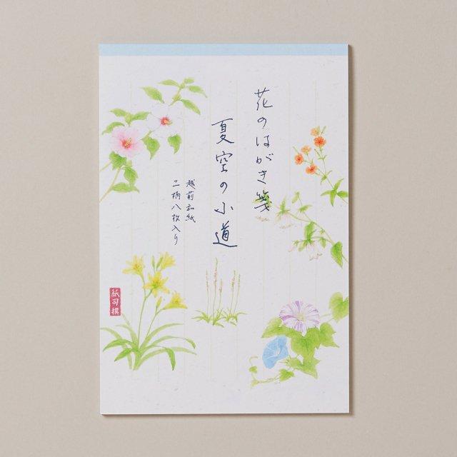 紙司撰 はがき箋 花のはがき箋 夏空の小道