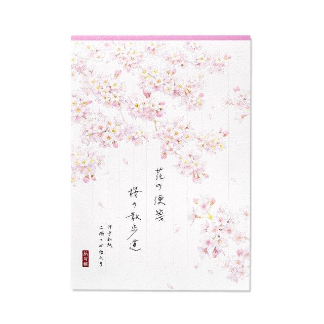 紙司撰 便箋 花の便箋 A5・桜の散歩道 タテ罫