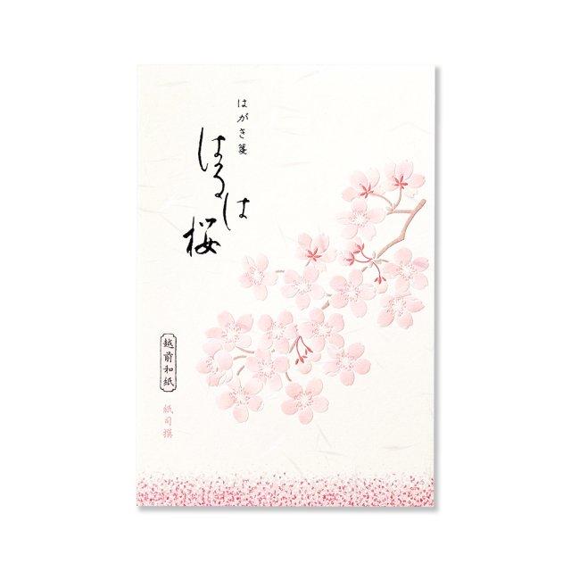 紙司撰 便箋 はるは桜