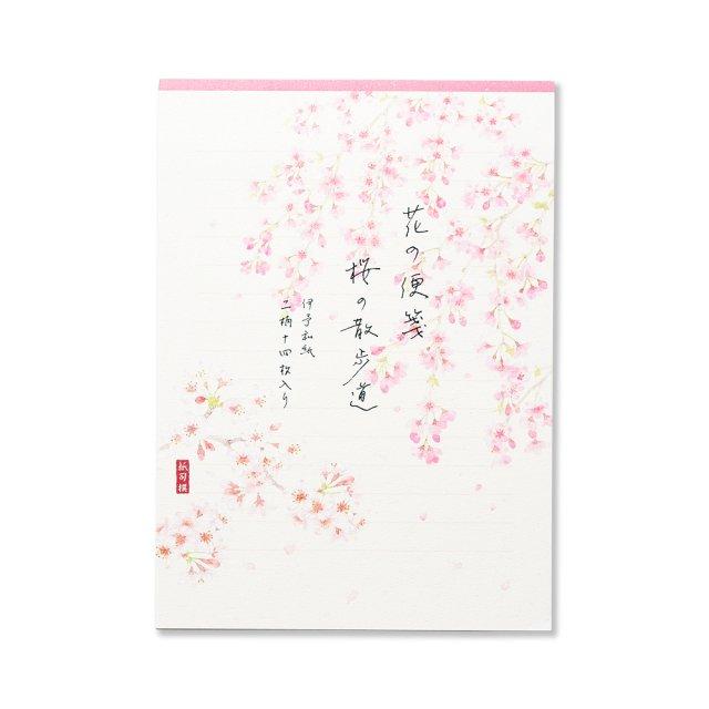 紙司撰 便箋 花の便箋 桜の散歩道 横罫線入り