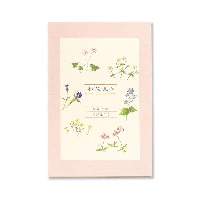はがき箋 和花色々 ヨコ罫