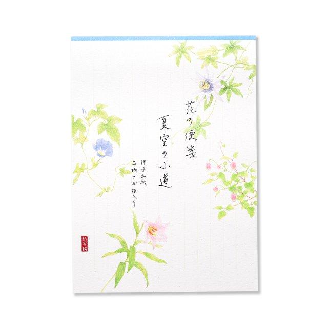 紙司撰 便箋 花の便箋 夏空の小道 タテ罫