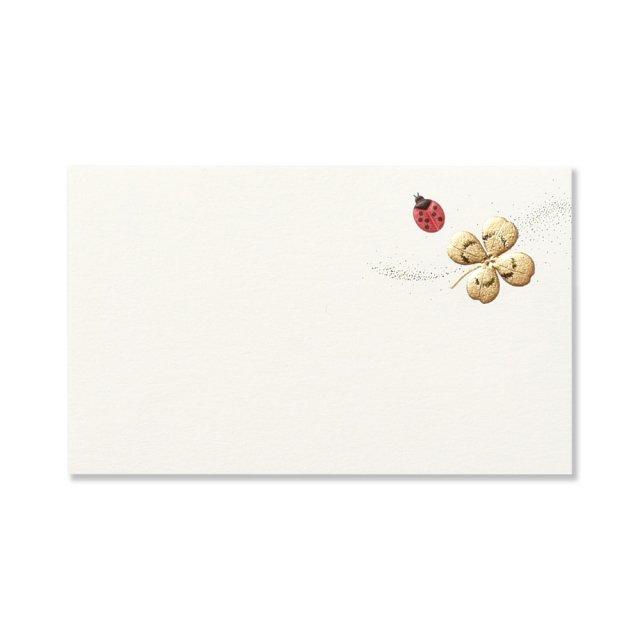 ミニメッセージカード Ladybird テントウムシ
