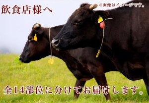 [ここ滋賀]近江牛A5ランク約340kg まるごと一頭【日産食品】 ※