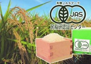 [ここ滋賀]滋賀県産JAS有機オーガニックコシヒカリ 白米5kg【有限会社もりかわ農場】 ※