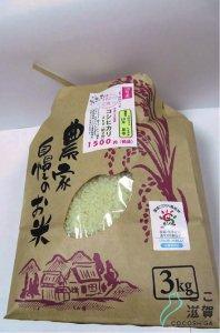 [ここ滋賀]コシヒカリ 3kg 【松源】 ※