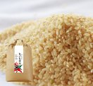 プレミアムヒノヒカリ玄米/10kg