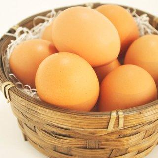 ☆定期便☆はやしの平飼い有精卵 40個