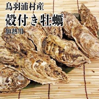 【冷蔵】鳥羽浦村産 殻付き牡蠣(10個) 加熱用