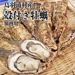 【冷蔵】鳥羽浦村産 殻付き牡蠣(20個) 加熱用