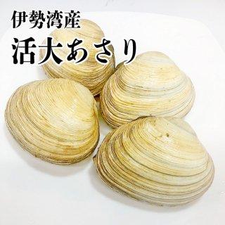 【冷蔵】伊勢湾産 大あさり 900g 中サイズ