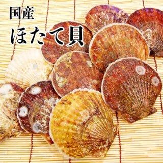 【冷蔵】ほたて貝 (20枚)