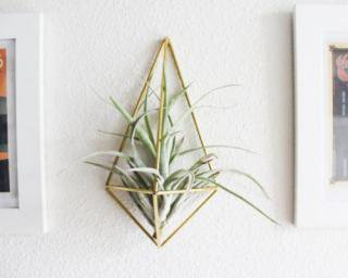 HANDMADE SAM*MADE | THE PLANTER | AIR PLANT HOLDER | プラントホルダー