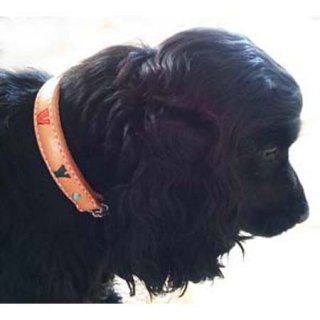 小型犬用ナチュラルビッグネームカラー