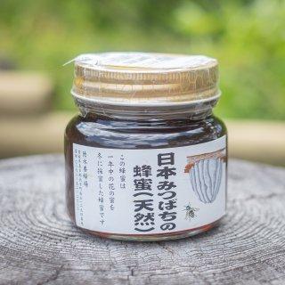 日本みつばちの蜂蜜(天然、地ミツ) 300g