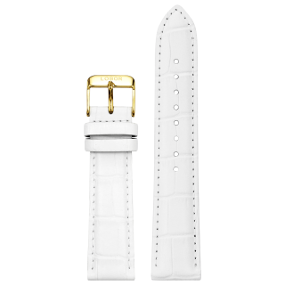 DYNASTY WHITE STRAP 20MM(GOLD)