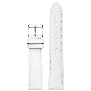 DYNASTY WHITE STRAP 20MM(SILVER)