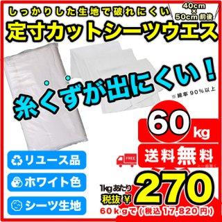 《予約販売》B:シーツウエス【50kg】