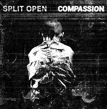 SPLIT OPEN / COMPASSION SPLIT LP