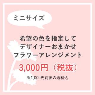 お色味指定OK 生花アレンジ 3,000円お任せ ※送料込