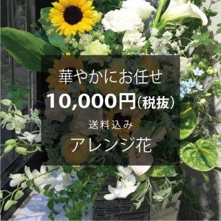 華やかにお任せ アレンジ花 花代8,500円(税抜)+送料