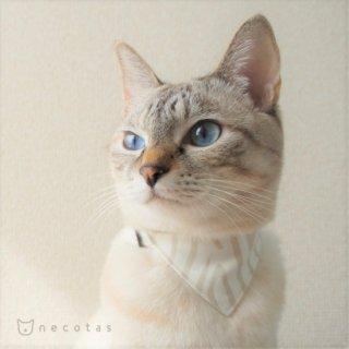 猫 首輪 バンダナ ゼブラ柄  グレー セーフティ猫首輪