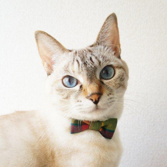 猫 首輪 リボン 3色タータンチェック セーフティ猫首輪