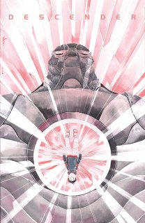 DESCENDER #19 (MR)