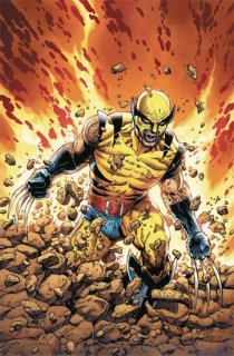 RETURN OF WOLVERINE #1 (OF 5) MCNIVEN ORIGINAL WOLVERINE VAR