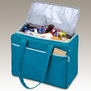 保冷バッグ おしゃれ 大容量 サーモス RED-022BL 22L ブルー