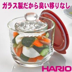 ハリオ ガラスの一夜漬け器 S・レッド GTK-S-R