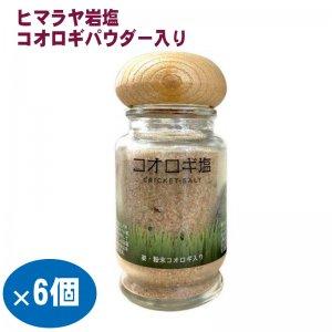 6個セット 昆虫食 コオロギパウダー入りヒマラヤピンク岩塩 コオロギ塩