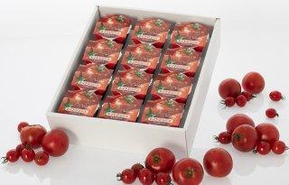 日向の雫プレミアムトマトジュース(12個)+ギフト箱