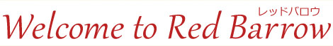 アンティーク雑貨, 古着 & テディベア専門店のレッドバロウ