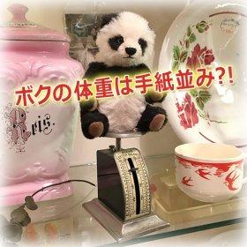 "<img class='new_mark_img1' src='https://img.shop-pro.jp/img/new/icons21.gif' style='border:none;display:inline;margin:0px;padding:0px;width:auto;' />砂子千登世さんのブランド * "" Chito Bear "" * 手のひらに乗るくらい小さいパンダちゃん *【 A-1866 】"