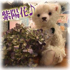 """2010年 * """" 日本の名花シリーズ """" 第9弾ベア *「 テディベア・あじさい (紫陽花) * Teddy bear Hortensie 」*【 S-1856 】<img class='new_mark_img2' src='https://img.shop-pro.jp/img/new/icons11.gif' style='border:none;display:inline;margin:0px;padding:0px;width:auto;' />"""