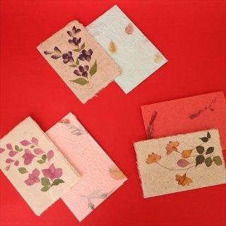 韓国文具  封筒と2つ折りカード