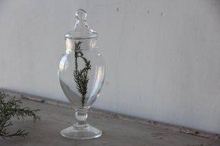 ガラスの種子瓶/標本瓶