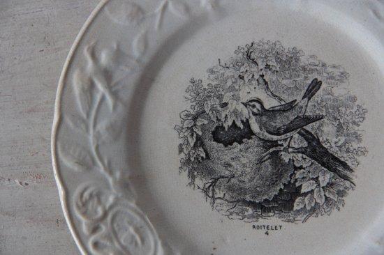 MOUZIN Fres & Cie/ONNAING NORD 小鳥の転写絵皿A