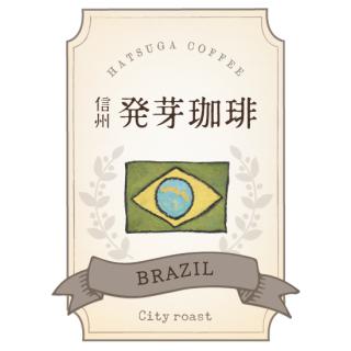 信州発芽珈琲 ブラジル 焙煎豆/粉