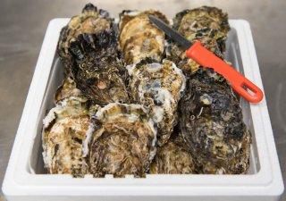 プレミアム殻付き牡蠣(厳選)40個