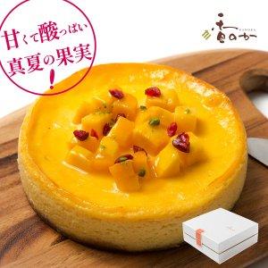 マンゴーチーズケーキ(直径15cm)