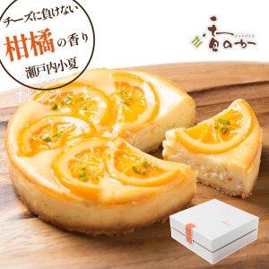 瀬戸内オレンジチーズケーキ(直径15cm)