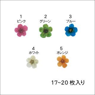 ネイル 押し花(ドライフラワー)<br />◆<font color=blue>期間限定!20%off!</font>